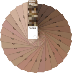 Pantone. (2020). [Photograph of Patone Skintone™ color cards for 110 skin shades]. Retrieved March 10, 2020 from https://www.pantone.com/skintone-guide