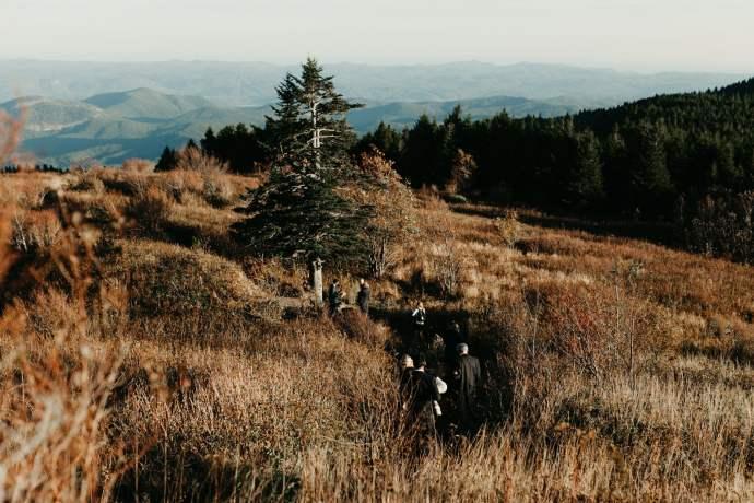 black balsam knob hike