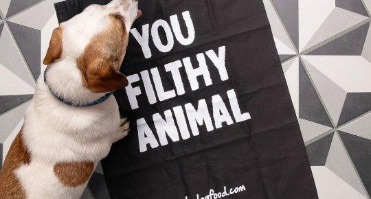 https://itsdogfood.com/
