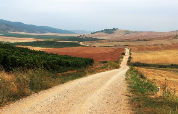 Camino between Villamyor and Los Arcos