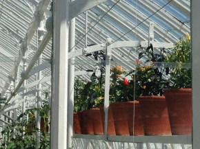 The impressive Victorian glass-houses in the college gardens