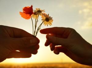 Handing Flowers, Nice Gesture