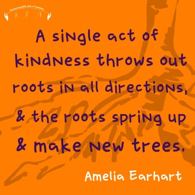 amelia earhart quote kindness