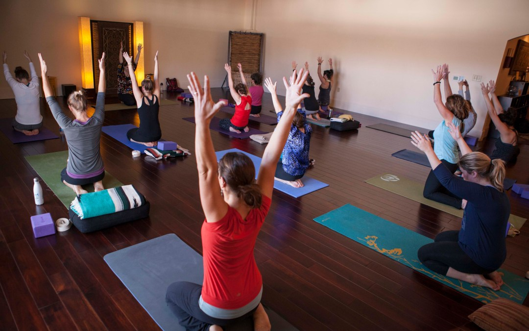 Beginners' Yoga Series in June – All are welcome!