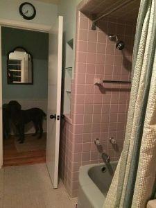 bathroom remodel, remodeling, bathroom, Racine