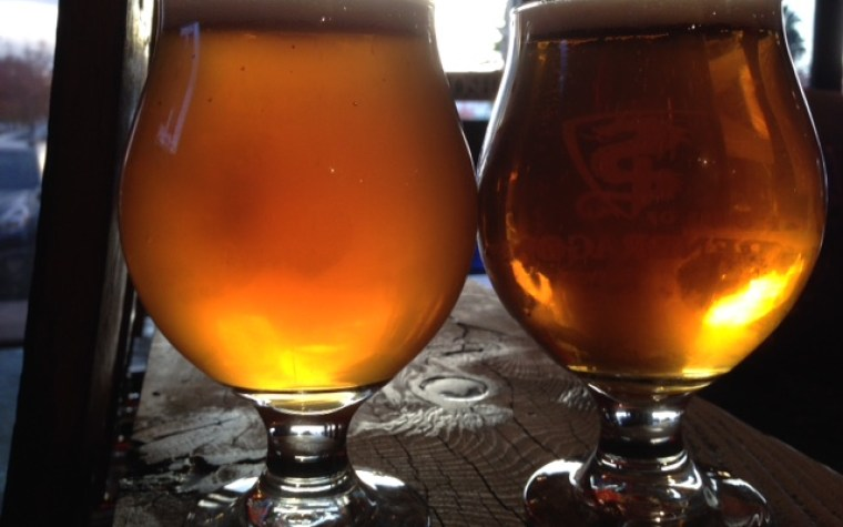Two glasses of beer one of them extremely hazy the other one very clear