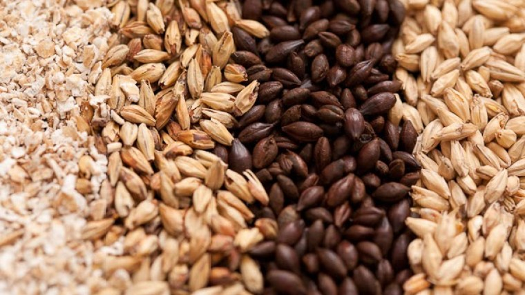 Different types and colors of malt grains