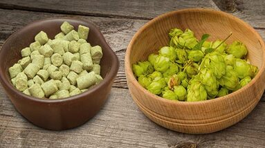 A bowl of hop pellets and a bowl of fresh hop flowers.