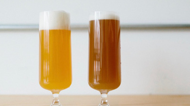 Two glasses of beer, one nice golden color and the other one with dark brown color from oxidation