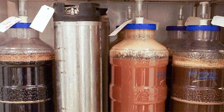 Different types of glass, plastic and stainless steel fermenters for beer brewing.