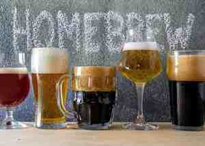 Different types of homebrewed beer in various types of glasses.