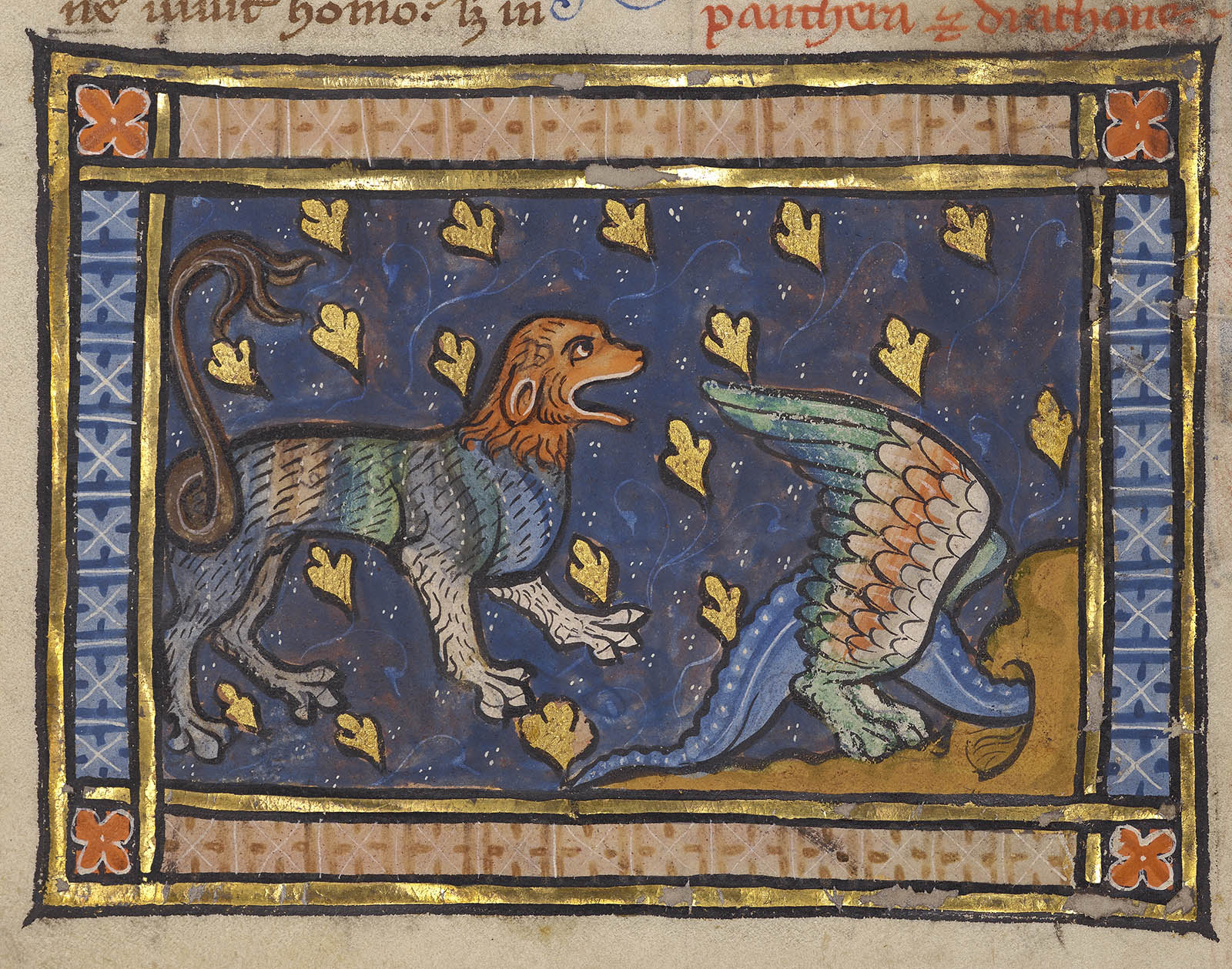The Panther Alpha And Omega Of The Me Val Bestiary
