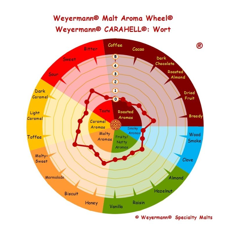 Profil aromatique Malt Carahell