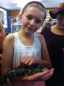 Nessie - our blue tongue.