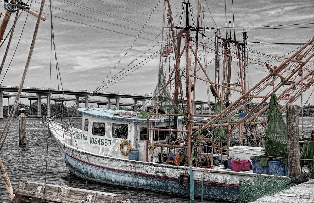 We must not fail the British fishing industry in the Brexit negotiations