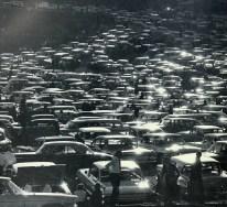 1962 Razorback
