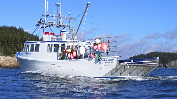 Buck's Harbor, ME is the homeport of the 50'x20' Logan & Olivia, built by Dixon's Marine in Woods Harbour, Nova Scotia for lobsterman Dallas Huckins.