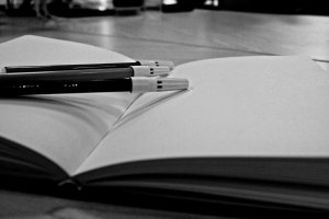 Image: Public Domain, Pixabay