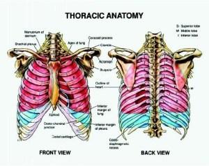 Medical Terminology  Briana Kerr