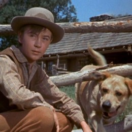 1957 Beholds Spirit Film, Old Yeller