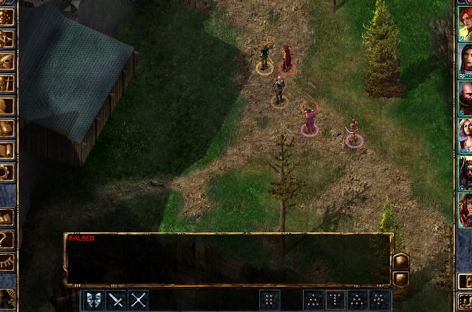 Baldur's Gate Enhanced Edition Brian Watkins