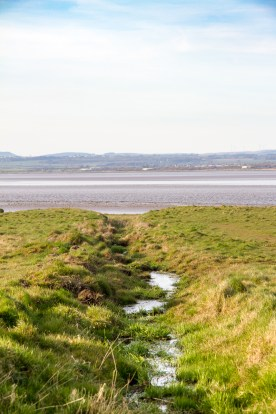 Gully To The Solway