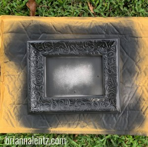 Picture Frame with Spray Paint