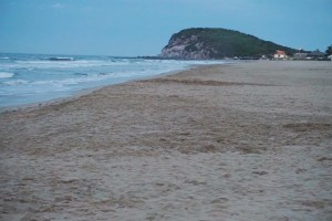 My Trip to Mazatlan Mexico Riu Emerald Bay