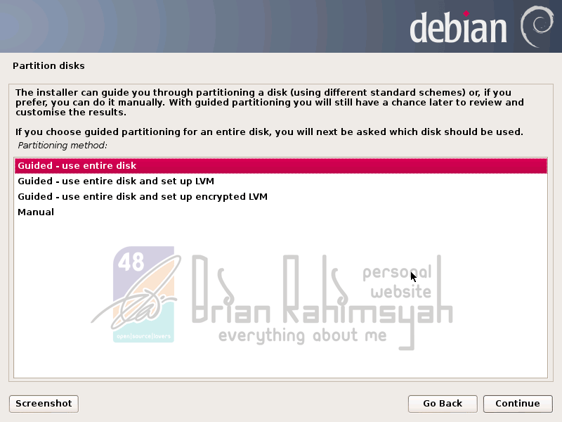 Debian 7 guided partition disk