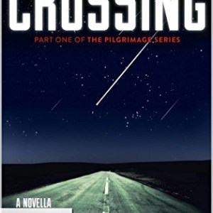Book: The Perseid Collapse Series: Crossing (The Pilgrimage Series Book 1) by Tom Abrahams