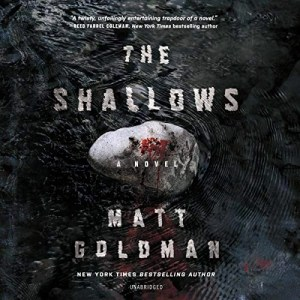 The Shallows (Nils Shapiro #3) by Matt Goldman (Narrated by MacLeod Andrews)