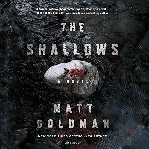 The Shallows by Matt Goldman