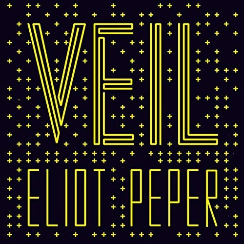Veil by Eliot Peper (Narrated by Jennifer O'Donnell)