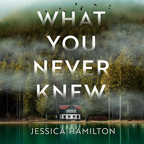 What You Never Knew by Jessica Hamilton