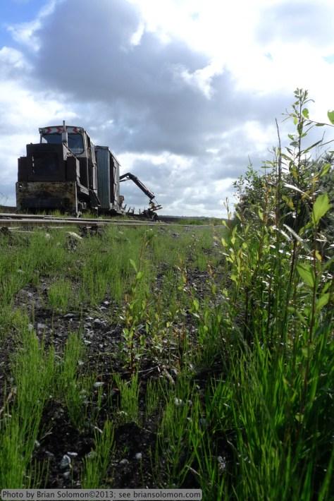 Maintenance train with sunny skies and weedy tracks. Lumix LX3 photo.