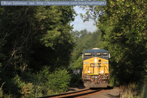 On July 31, 2010, an eastward CSXT intermodal train works the former Boston & Albany at West Warren, Massachusetts. At the time heavy line-side brush made photography challenging. Canon EOS 7D.