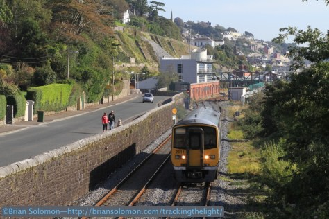 A railfan dog gazes with enthusiasm as a 2600 series railcar roars out of Cobh on its way back to Kent Station, Cork. Canon EOS 7D with 200mm lens.