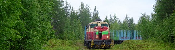Timber Train at Ammansaari