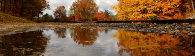 Autumn Foliage—Two Tips for Digital Photographers