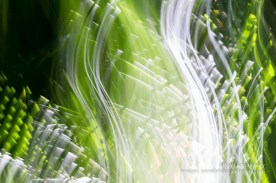 Nature abstract green leaves form patterns shapes and sweeping lines in a motion blur image