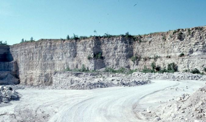crinoid limestones