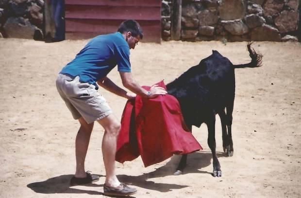 Wayne-bull