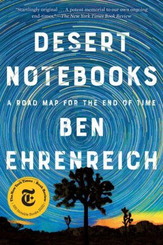 Desert Notebooks - Ben Ehrenreich