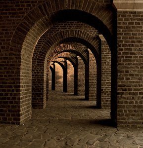 vaulted cellar, tunnel, arches