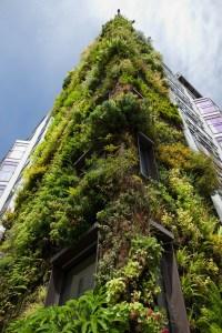 architecture, building, environment-21665.jpg