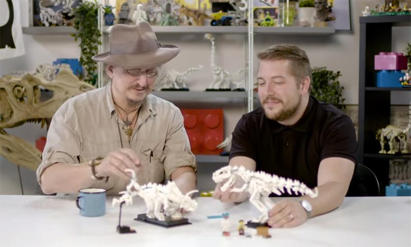 Dinosaur Fossils (21320)