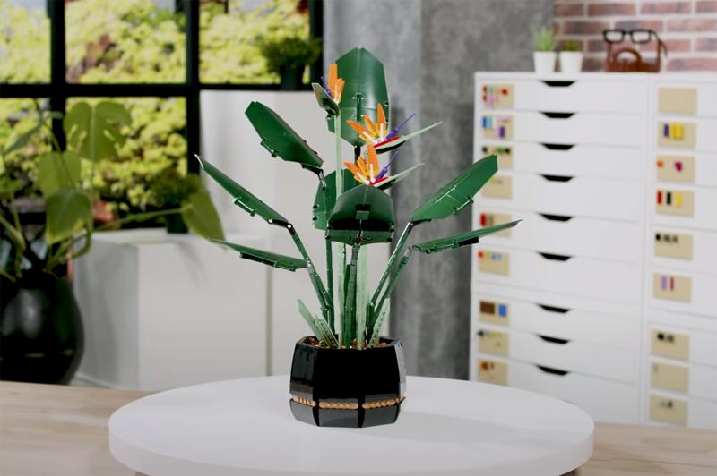 WATCH: LEGO Botanical Collection Bird of Paradise (10289) Designer Video