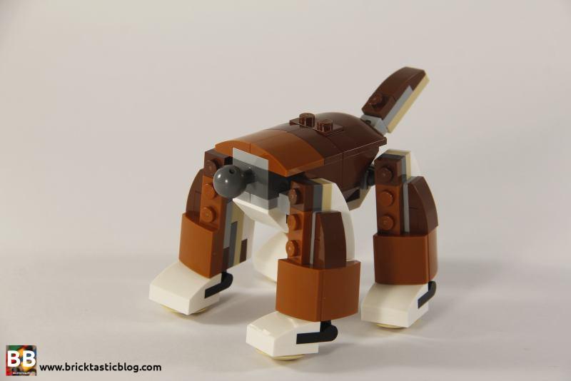 31044: Park Animals Dog