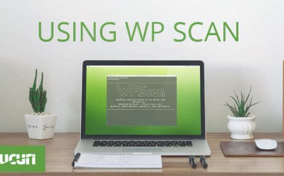 How to scan for WordPress vulnerabilities with WPScan
