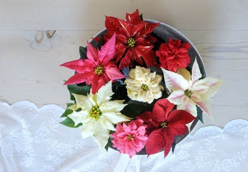 decoracion de navidad de flor de pascua 1